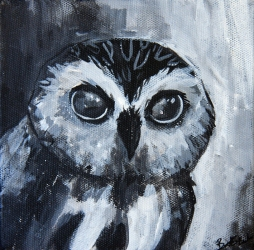 Little Owl, 6x6 acrylic on canvas, SOLD.